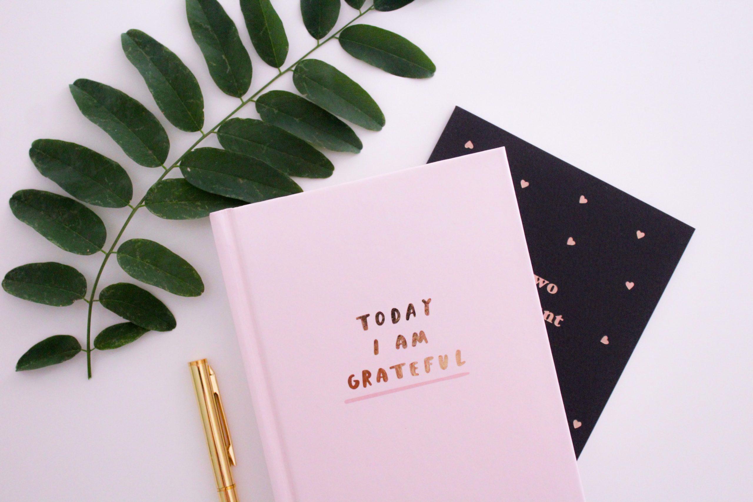 More on Gratitude